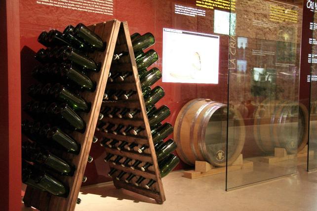 Museo del Vino en Peñafiel