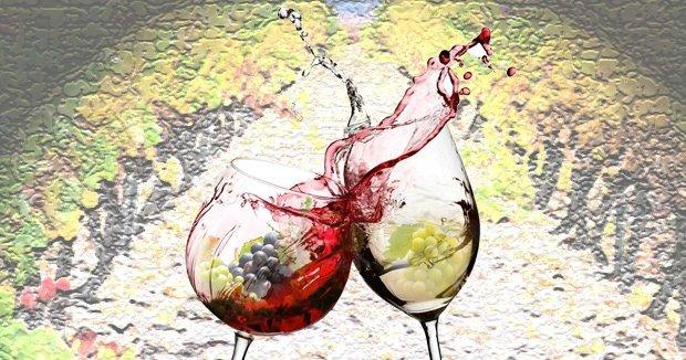 La Ruta del Vino ¡con prisas!