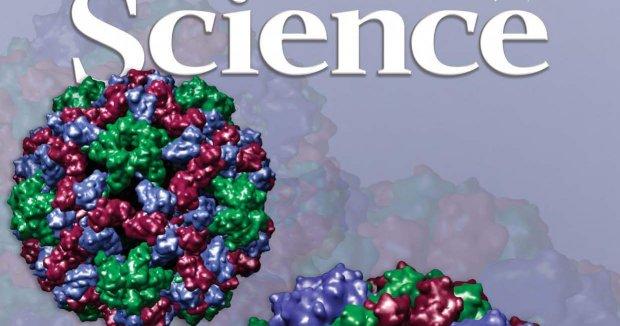 Science se fija en la D.O. Ribera del Duero
