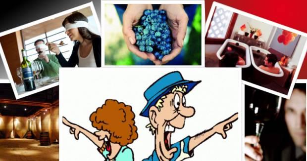 Tipos de Enoturista en las Rutas del Vino