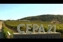 Cata de Hito 2013, vino de Bodegas Cepa 21